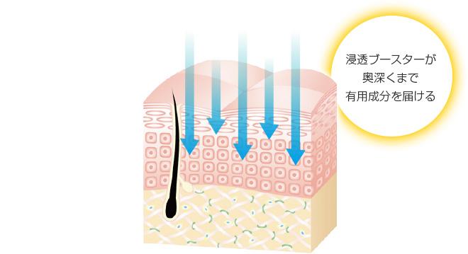 浸透ブースターが奥深くまで有用成分を届ける